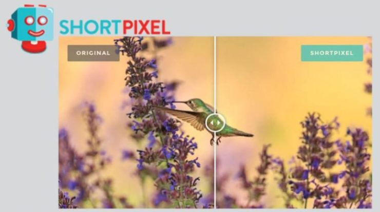 plugin shortpixel-image-optimization