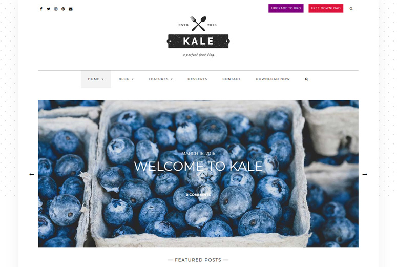kale-wordpress-θέμα